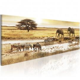 Cuadro - África: en el pozo de agua