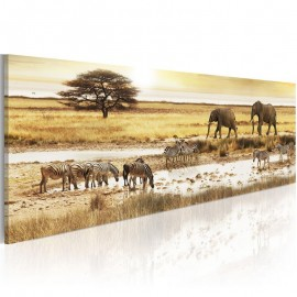Quadro - Africa: at the waterhole