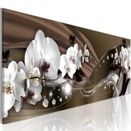 Cuadro - Baile de orquídeas con chocolate