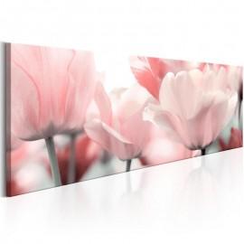 Quadro - Pink Tulips