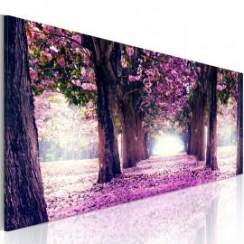 Quadro - Purple Spring