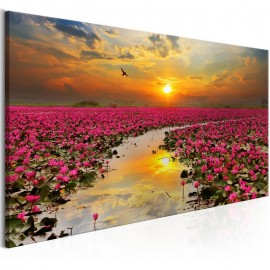 Quadro - Lily Field (1 Part) Wide