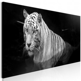 Cuadro - Shining Tiger (1 Part) Black and White Narrow