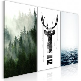 Quadro - Chilly Nature (Collection)