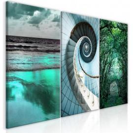 Quadro - Faces of Nature (3 Parts)