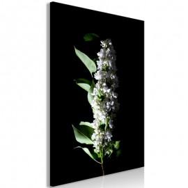 Quadro - White Lilacs (1 Part) Vertical