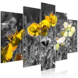 Cuadro - Yellow Poppies (5 Parts) Wide